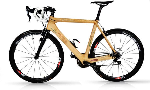 La prima bici in legno di castagno dell'Aspromonte: il prototipo del Parco e di Agraria
